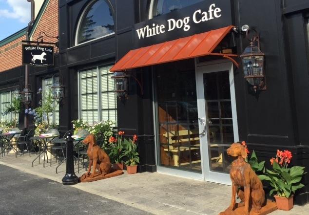 whitedoghaverford